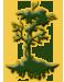 Cypress Island HOA Logo
